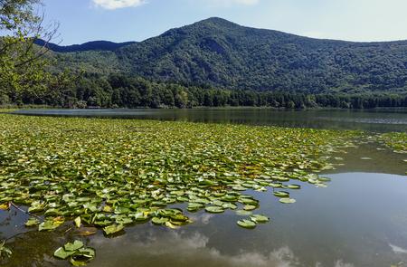 crater lake: Lake of Monticchio 180
