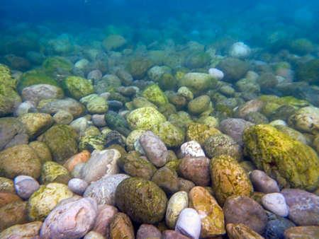 Submerged pebbles (339)