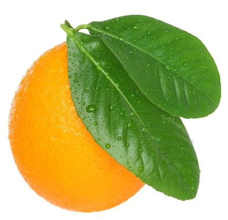 Ripe orange on a white background