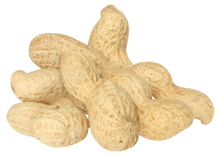 Peanuts on a white background. Stock Photo - 9857183