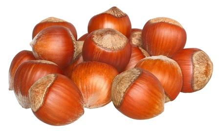 Hazelnuts on a white background.