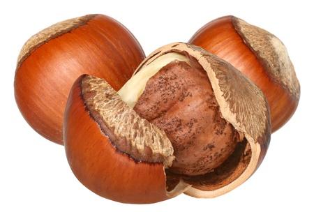 cobnut: Hazelnuts on a white background.