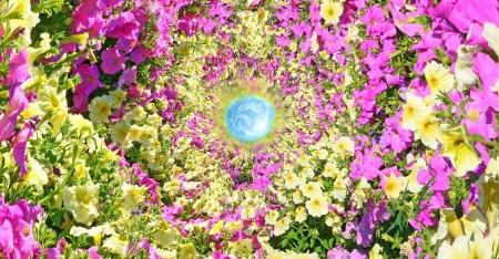elysium: Fantastic floral passage leading to heaven.