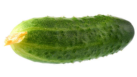 Fresh cucumber isolated on a white background.