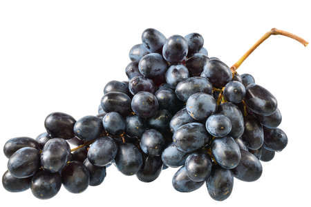 Ripe bunch of blue grapes on a white background.