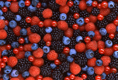 Texture of four different berries in flat lay angle. Standard-Bild