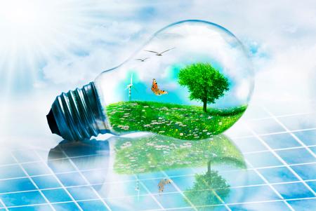 scena ekologicznego krajobrazu włożona do żarówki na panelu słonecznym Zdjęcie Seryjne