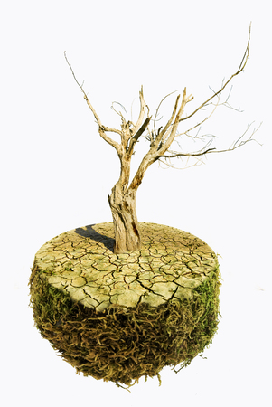conceptual scene: the planet Earth from the dry surface and burnt by drought, a lifeless dry tree symbolizes the disaster of the overheating of our planet Stock Photo