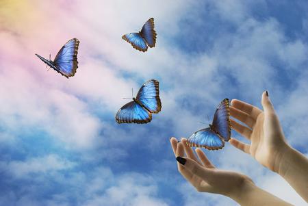 Las manos abiertas sueltan hermosas mariposas azules en el cielo místico Foto de archivo - 97239270