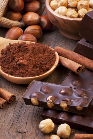 close-up of some pieces of dark chocolate with hazelnuts, cocoa powder, and flavored with cinnamon