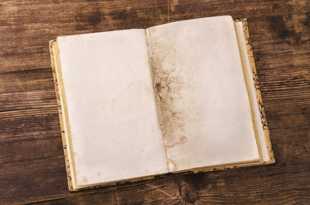 blank pages of an old book on a rough wood background