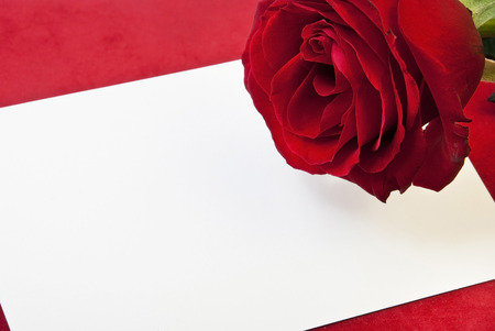 heart with red rose and white card on red velvet