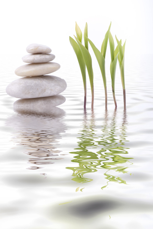 tower of white stones and leaf of lily of the valley are reflected in the water Stock fotó