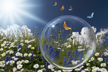 solar landscape with blue sky. in the foreground flowery meadow and a transparent bubble with some colorful butterflies.