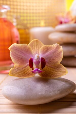 Wellness center. In the foreground an orchid. In the background candles, stacked stones, and bottles with perfumed essences