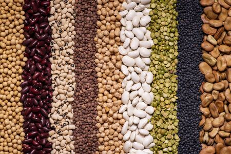 background seen from above with a large variety of dried legumes arranged in vertical rows