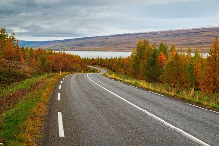 Panoramic view along the road for Lagarfljot river in eastside of Iceland