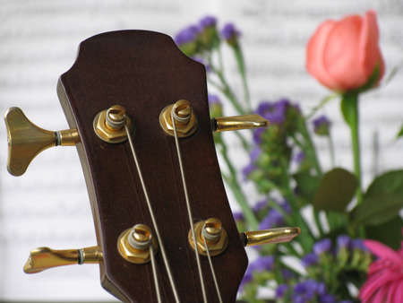 re do: Silhouette from a guitar and flowers Stock Photo