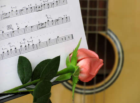 Silhouette from a rose and a guitar Stock Photo