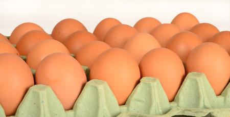 against white: Egg carton against white background.