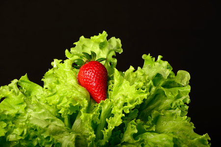 lettuces: Lettuces with strawberry against black background. Stock Photo