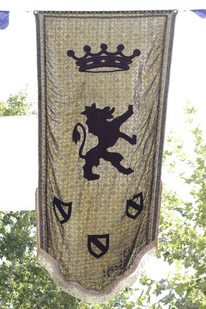 armory: medieval banner with a lion as symbol Stock Photo