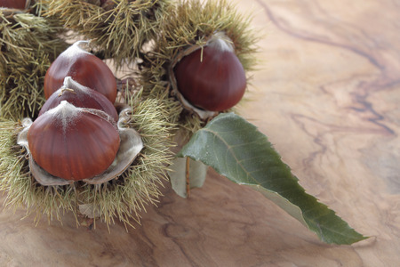 foreground: foreground of some chestnuts with their outward prickly rind