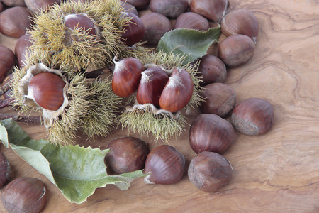 rind: some chestnuts with their outward prickly rind