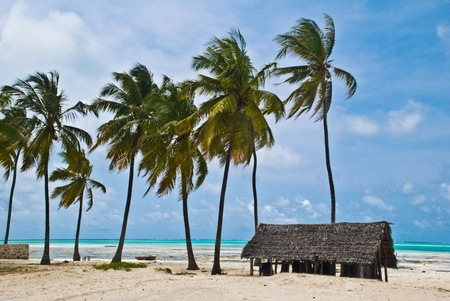 beautiful beach of white sand in Jambiani, Zanzibar, Tanzania Stock Photo