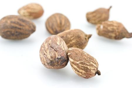 shea butter: Shea nuts Stock Photo