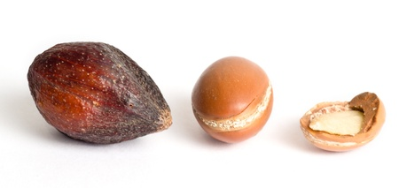 antiaging: Argan fruit in the shell, without shell and broken, with a visible almond inside Stock Photo