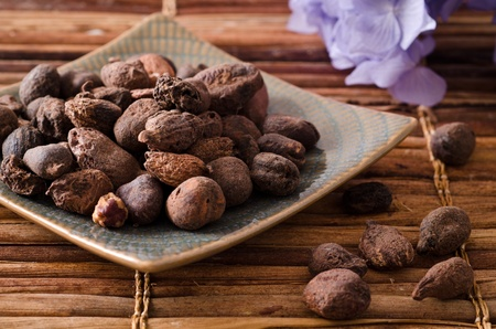 shea butter nuts in a natural background photo