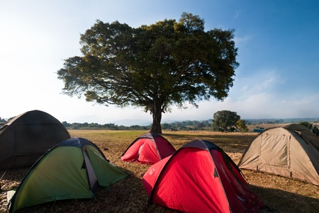 sunrise over the tents in a safari camp Stock Photo