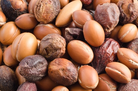 group of argan fuits