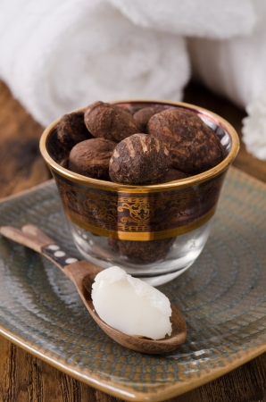 Shea butter and shea nuts. Ingredients of natural cosmetics