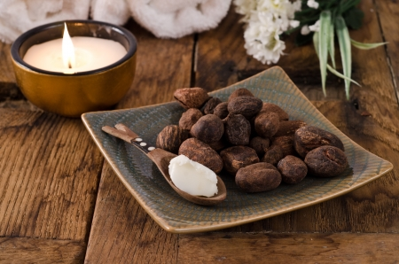shea butter: Shea nuts and shea butter on a spoon in a natural mood