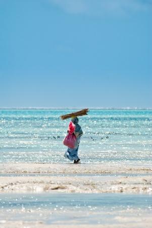 Woman working in Jambiani beach, Zanibar, during the low tide
