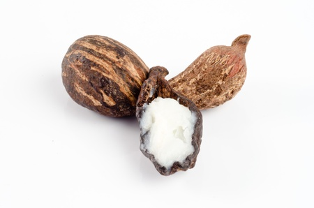 Shea nuts with sheabutter cream Stock Photo