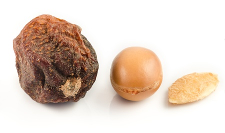 Argan fruits with nut, with shell and almond of argan. Isolated on white