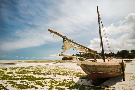 Zanzibar, boat on a beach during the low tide