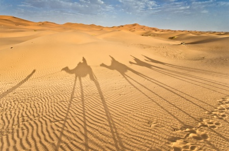 sahara: Morocco, Shadows of a camels caravan on the dune  Stock Photo