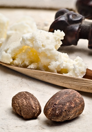 still life of two shea nuts with shea butter on the background Stock Photo