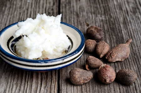 shea butter: Still life of shea butter and nuts, used for cosmetic products and skincare