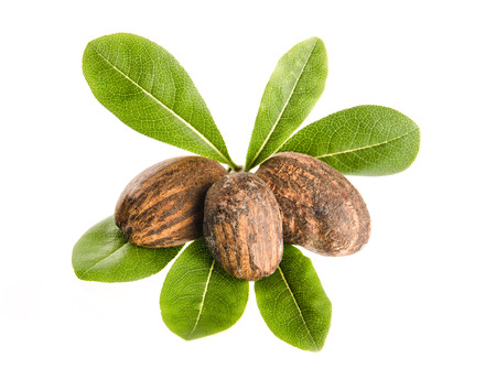 group of shea nuts with leaves on white  Foto de archivo