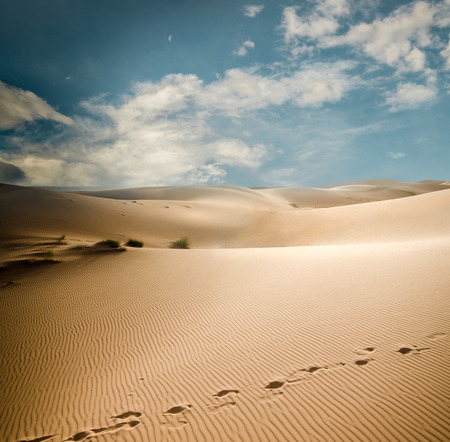 erg: Sahara dunes in Morocco, Erg Chebbi Stock Photo