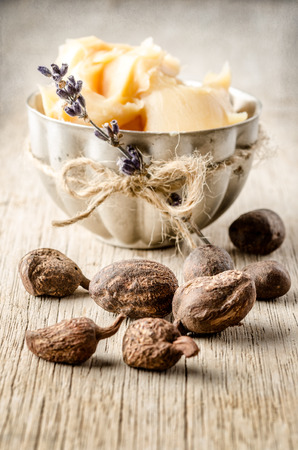 shea nuts with a cup of shea butter. Shallow depht of field Stock Photo - 30656718