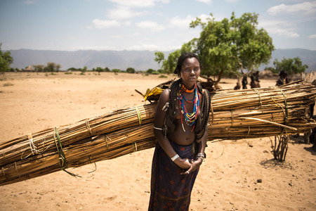 tribu: TURMI, ETHIOPIA, 16 AGOSTO 2015: unidentified womAn from Arbore tribe carring wood for building her home. Arbore tribe people are endangered because of oil field near their villages.