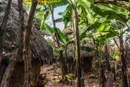 Traditional huts in a konso village, Ethiopia