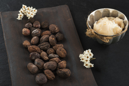 Shea butter and shea nuts on a chalkboard with copy space Stock Photo