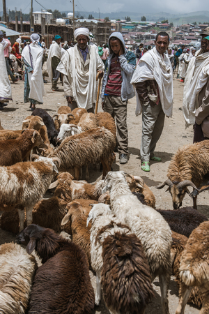cristian: SIMIEN MOUNTAINS, ETHIOPIA - AUGUST 29,2015: crowded weekly market in a small village in Ethiopia. In these markets are sold of kind of goods and animals